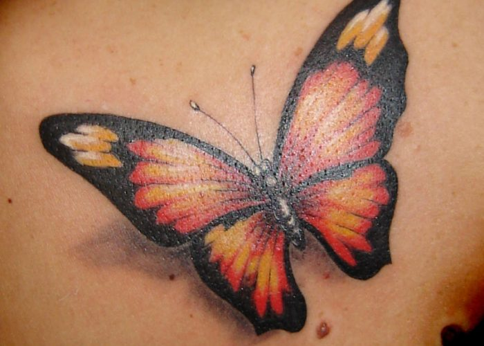 Butterfly-Tattoos-Images-Pictures