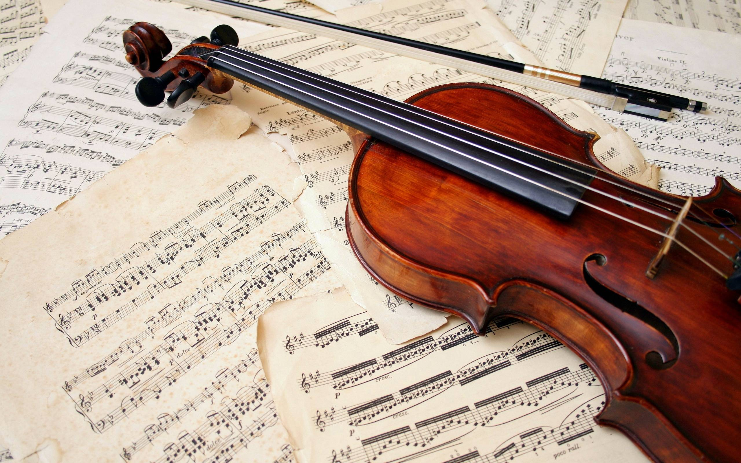 Violin Computer Wallpapers, Desktop Backgrounds 2560x1600 Id: 391320