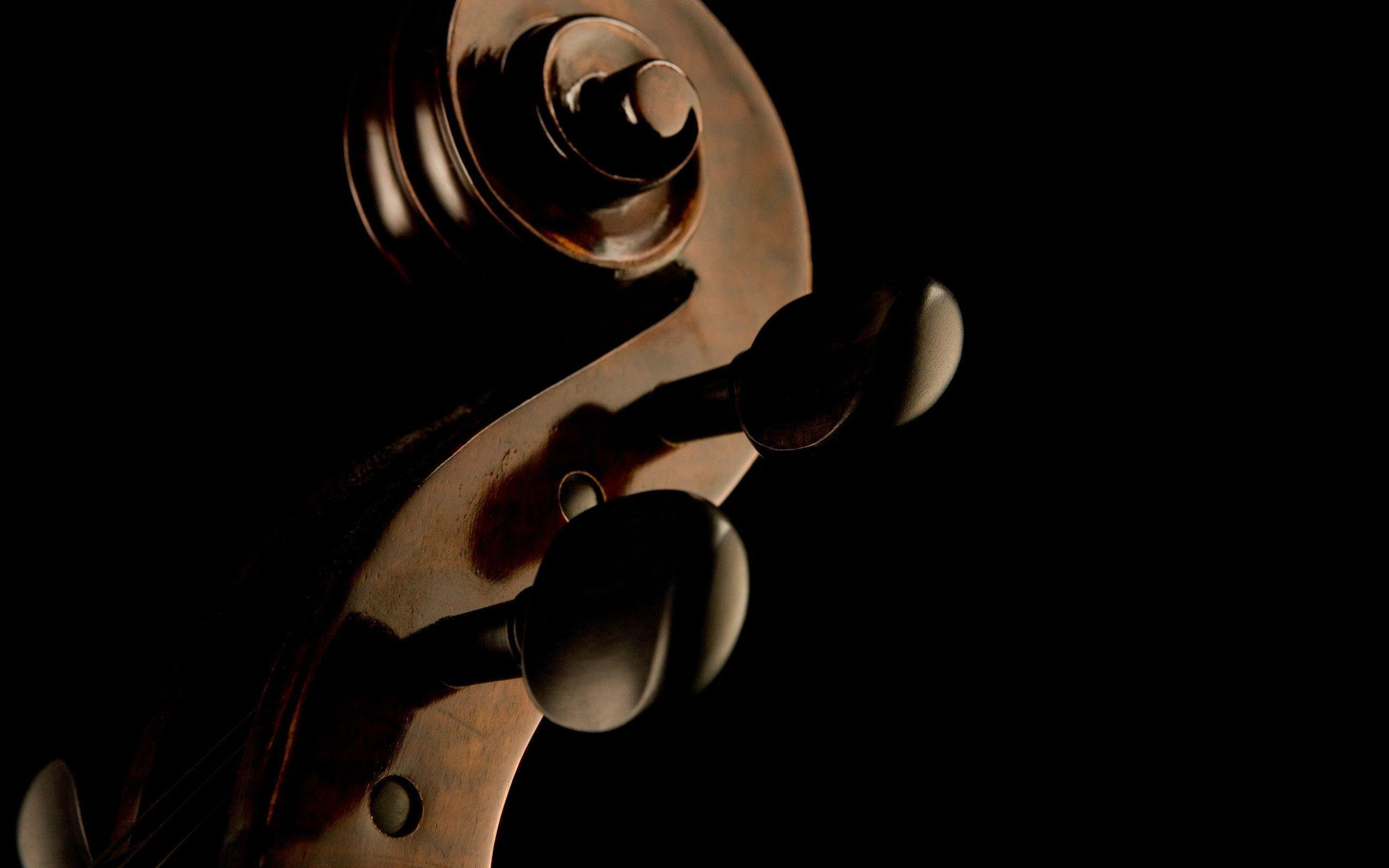 Violin Computer Wallpapers, Desktop Backgrounds 2560x1600 Id: 118794