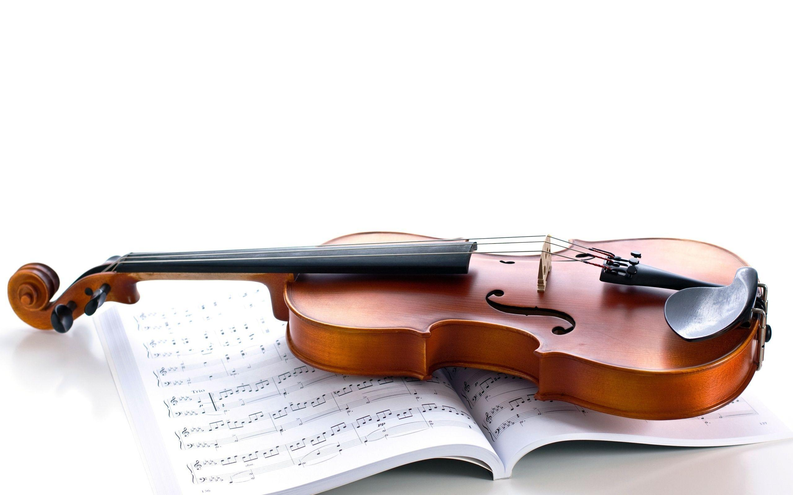 Violin Photo - Wallpaper, High Definition, High Quality, Widescreen
