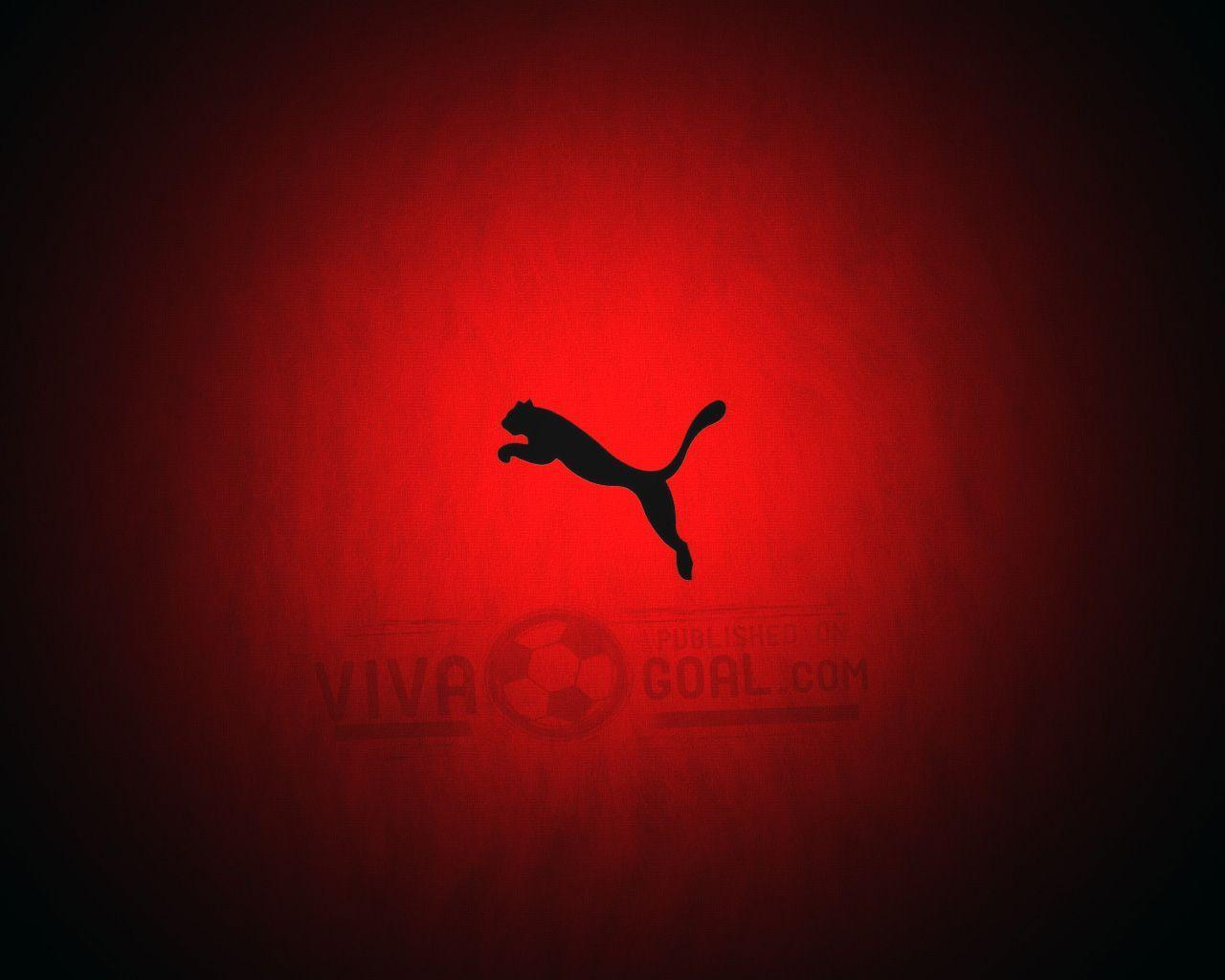 HD Puma wallpaper | Wallpaperbuzz.