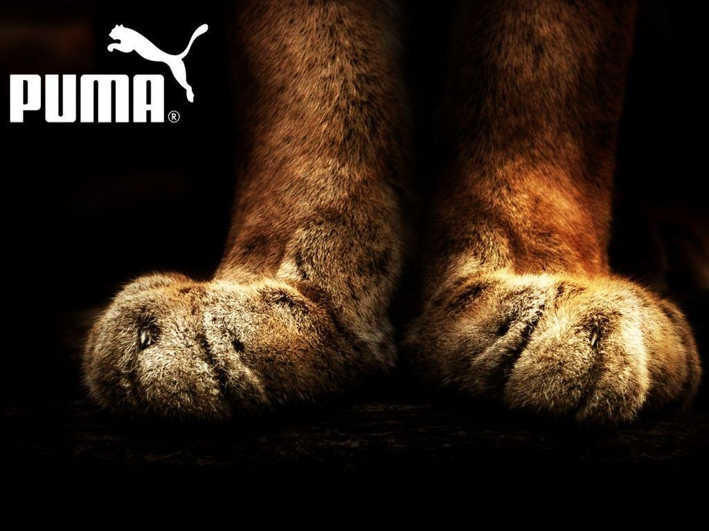 32 Fantastic Puma Wallpaper For Iphone - 7te.org