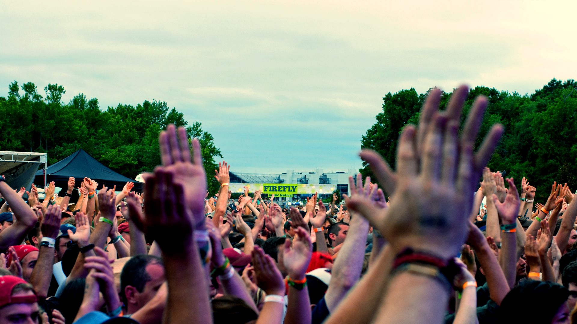 Why I Love The Woodlands: A Music Festival Experience