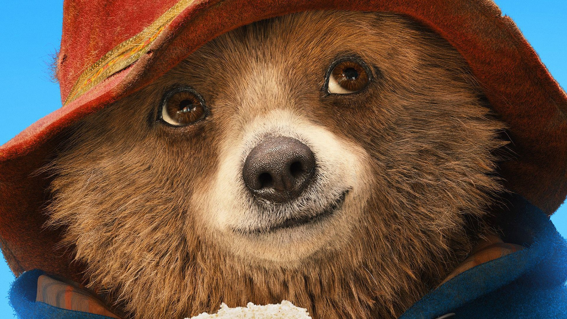 Paddington 2 2017 (Movie) | 1 Wallpapers