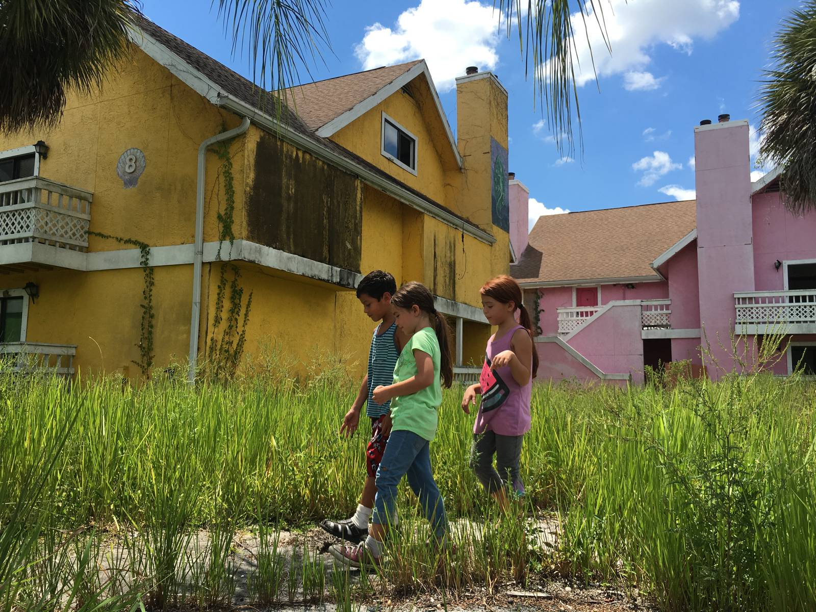 A Look at the Lurid Colours of The Florida Project | Amuse