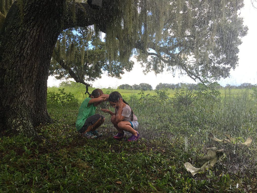 The Florida Project review: Dir. Sean Baker (2017)