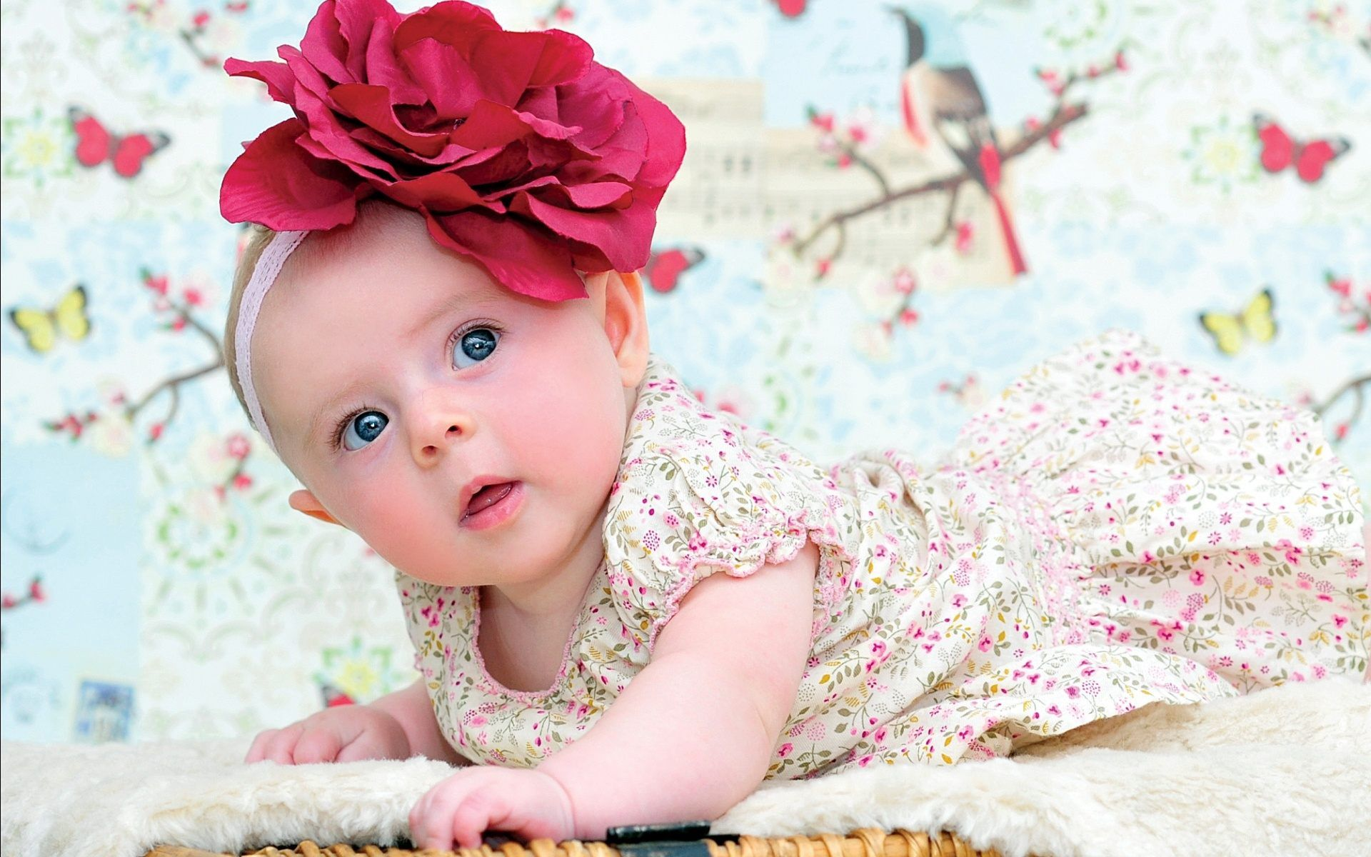 Wallpaper Hd For Widescreen Cute Little Baby Girl Of On Image ...