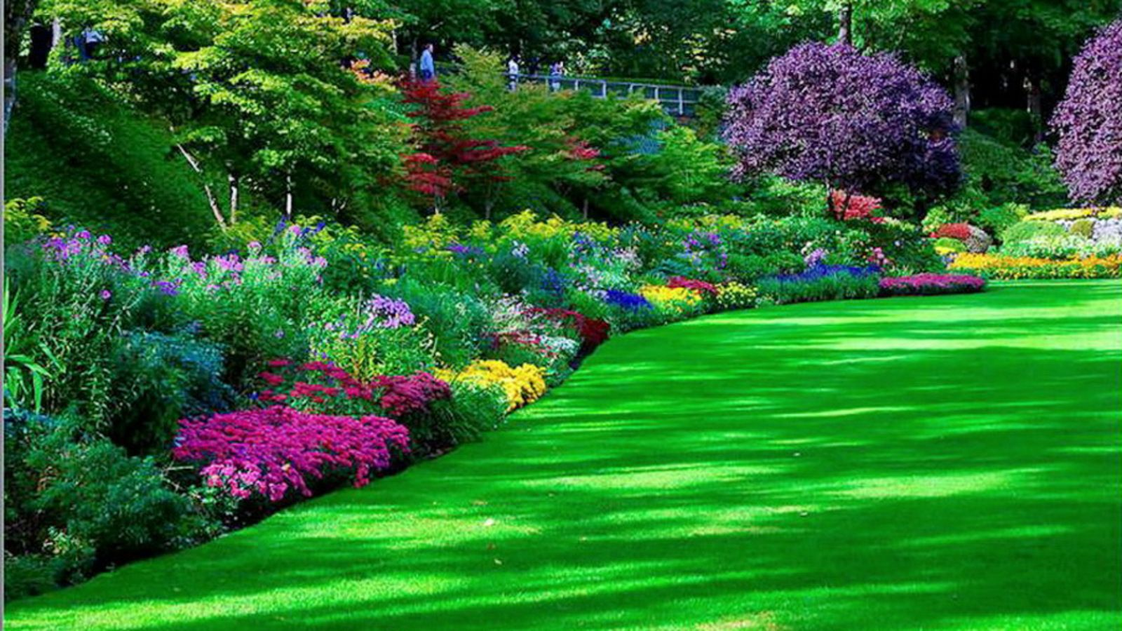 262 Garden HD Wallpapers | Backgrounds - Wallpaper Abyss