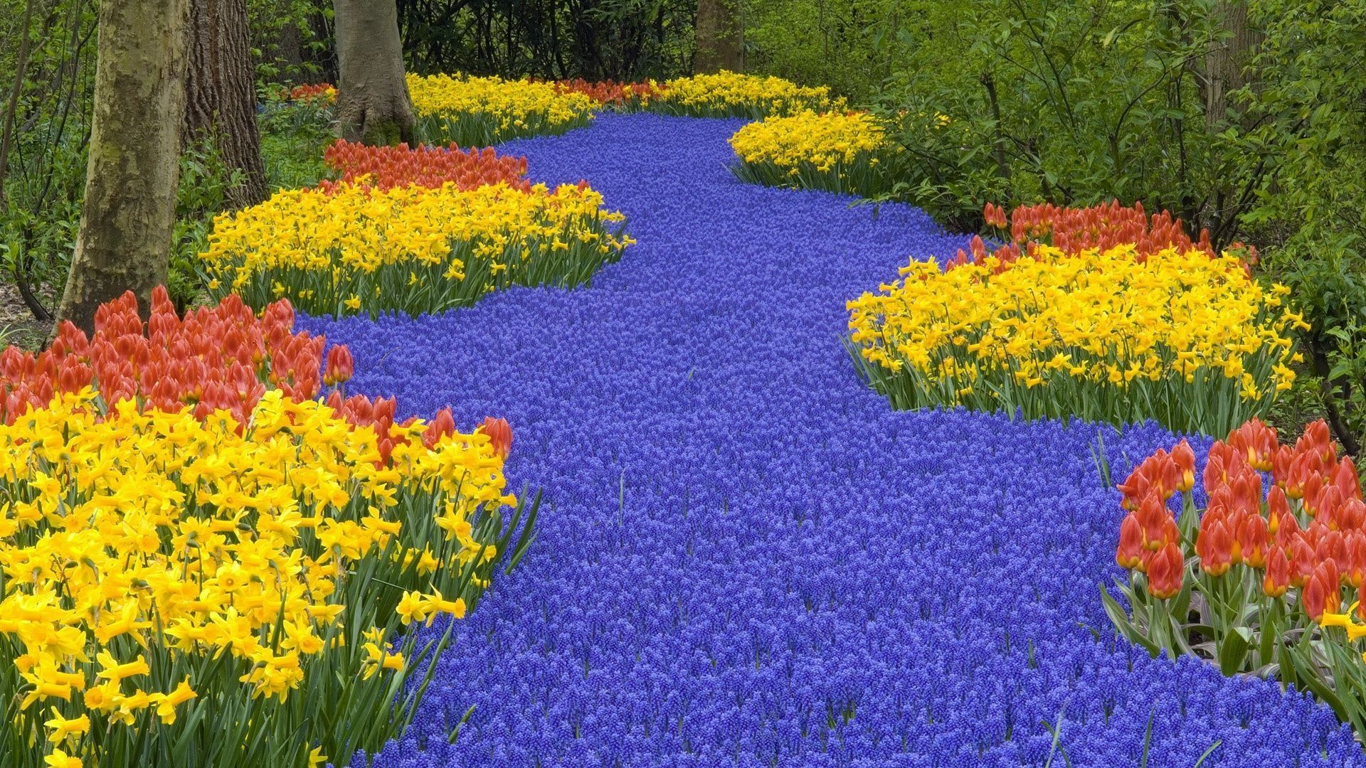 Amazing Flower Garden - WallDevil