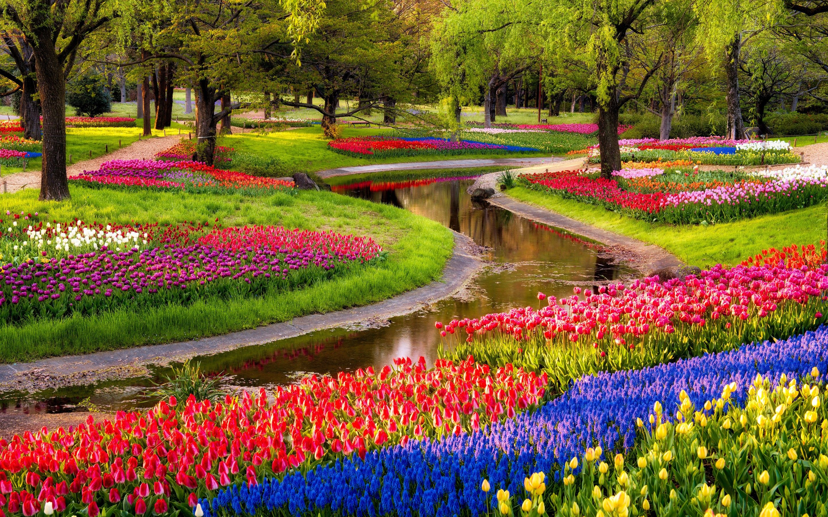 Flower Garden Wallpapers Enchanting Flower Garden - Home Design Ideas