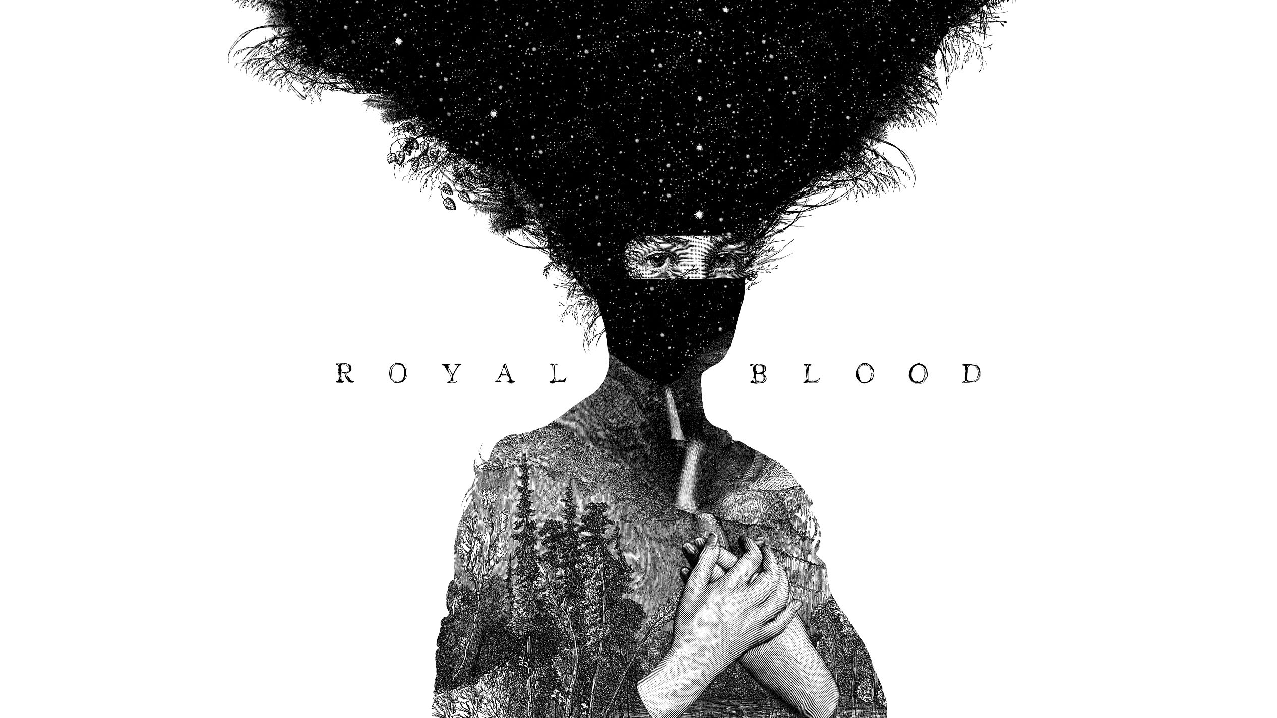 Royal Blood's Debut Album Wallpaper - Album on Imgur