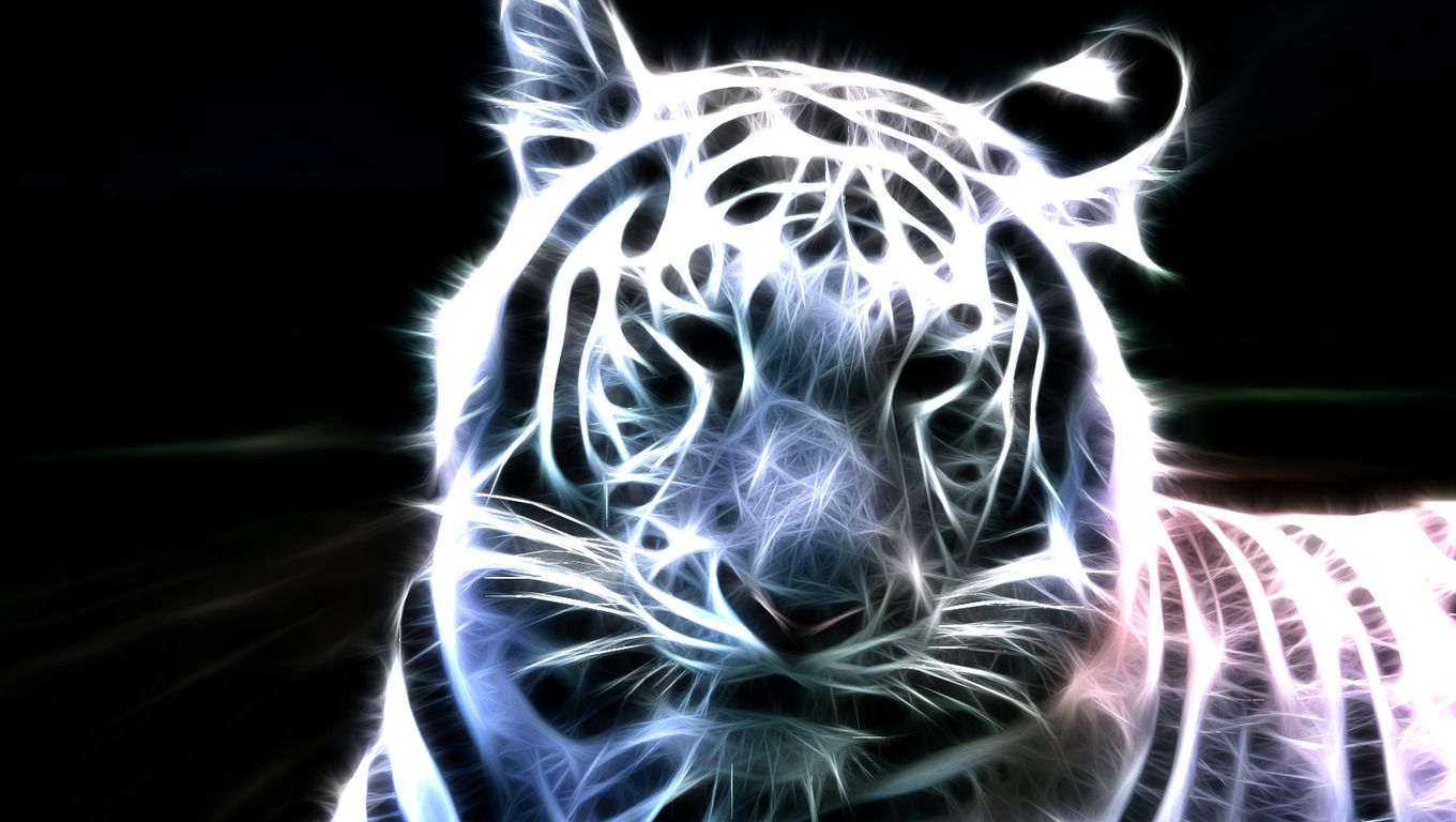 Cool Tiger Wallpaper - The Wallpaper