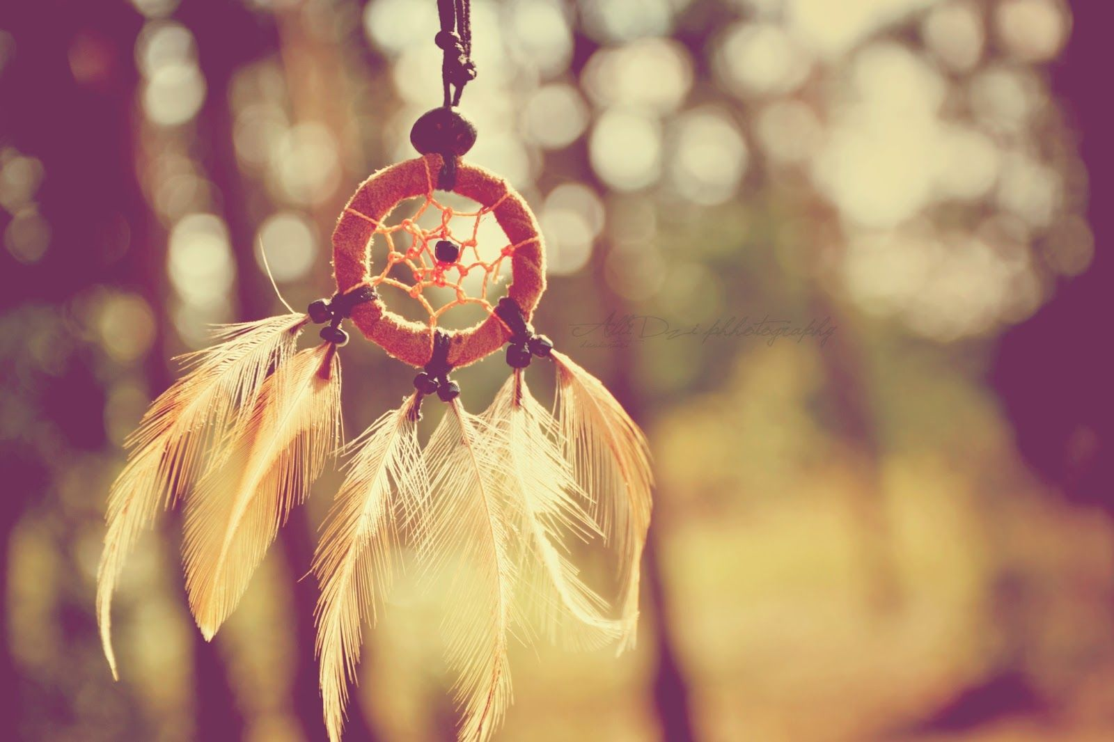 Dream Catcher Quotes - wallpaper.