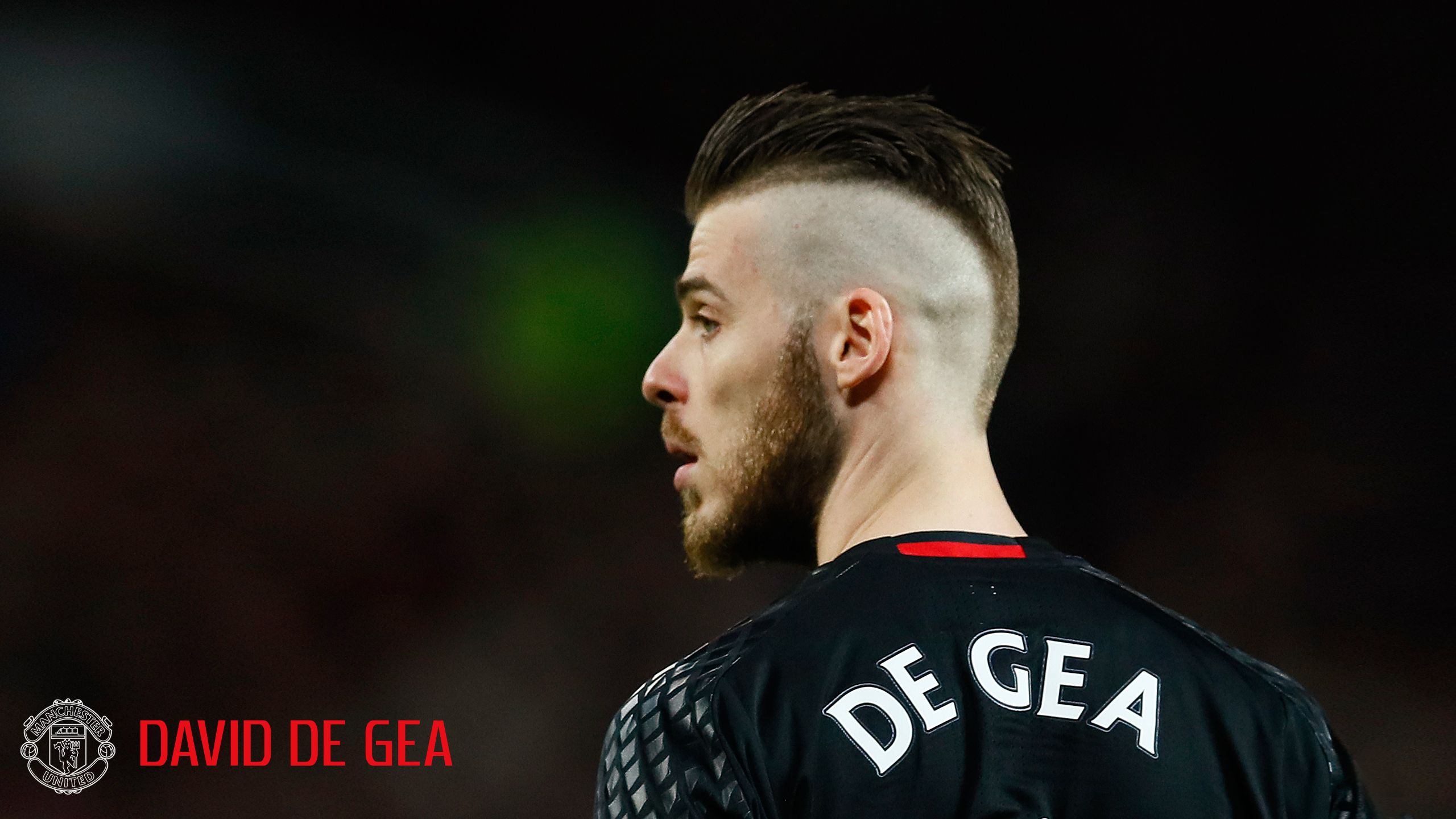 David de Gea Manchester United wallpaper - A Goal Keeper for 2017 ...