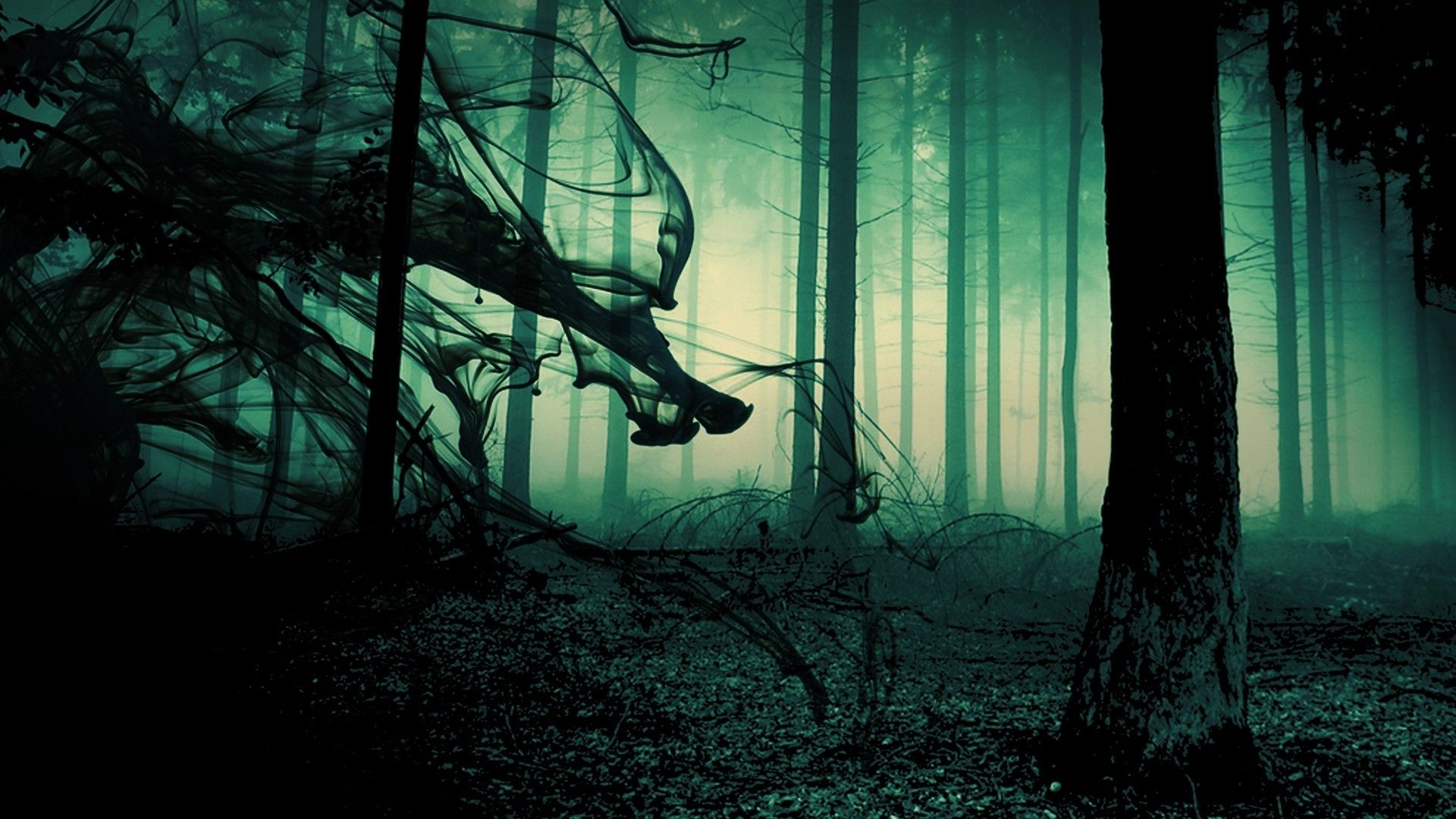 Creepy Forest Wallpaper Full Hd Images Of Laptop Dark Nature Trees ...