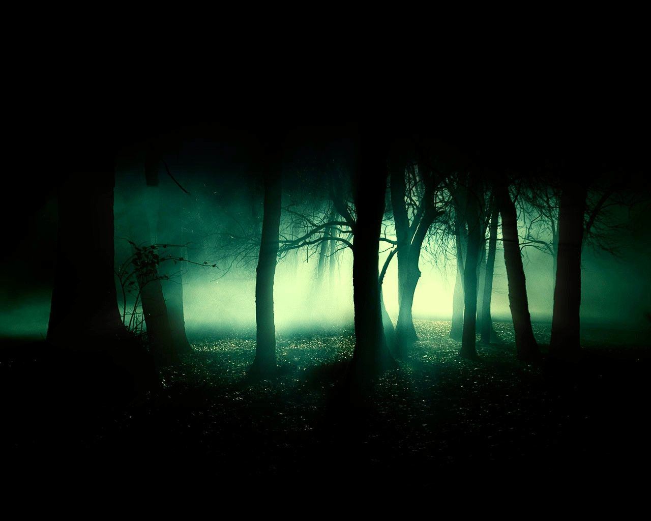 Forbidden+Forest+by+admin2gd1.deviantart.com+on+@DeviantArt ...