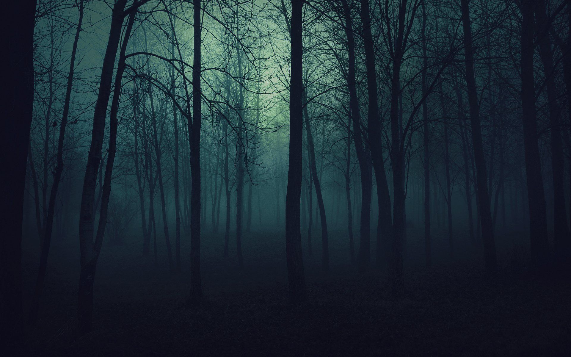 23 Forest HD Wallpapers | Backgrounds - Wallpaper Abyss