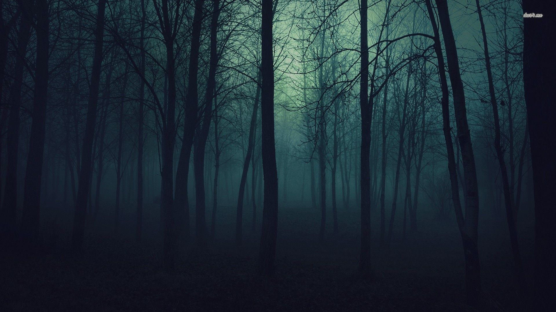 dark forest tumblr - Поиск в Google | Tattoos | Pinterest | Dark ...