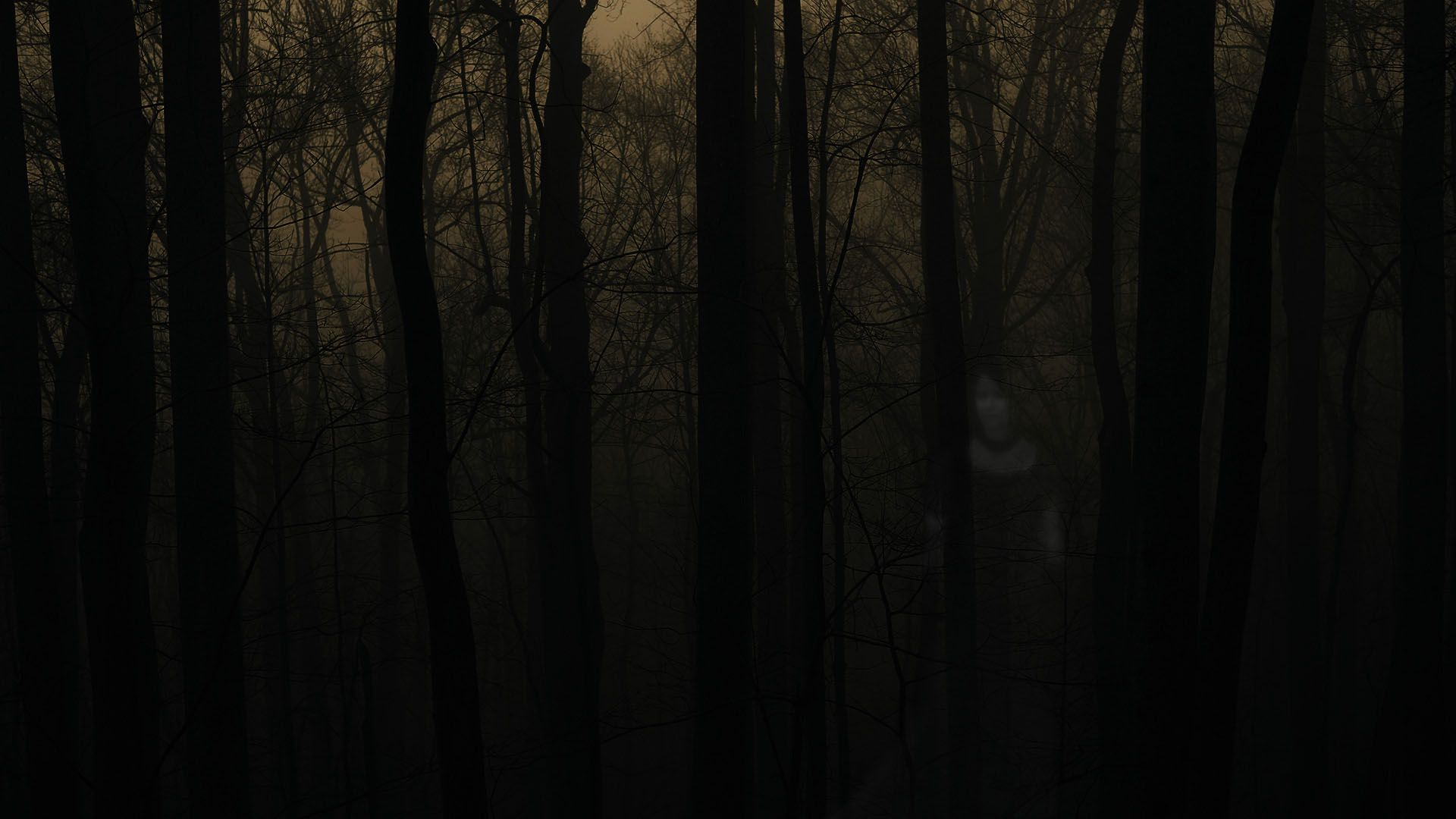 Spooky Forest Wallpapers - REuuN.com