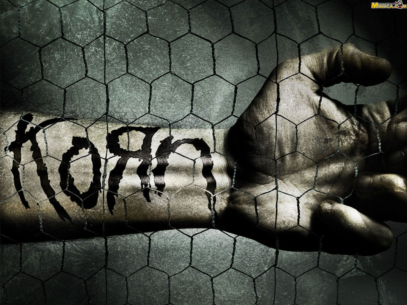 korn wallpaper | Korn and Wallpaper
