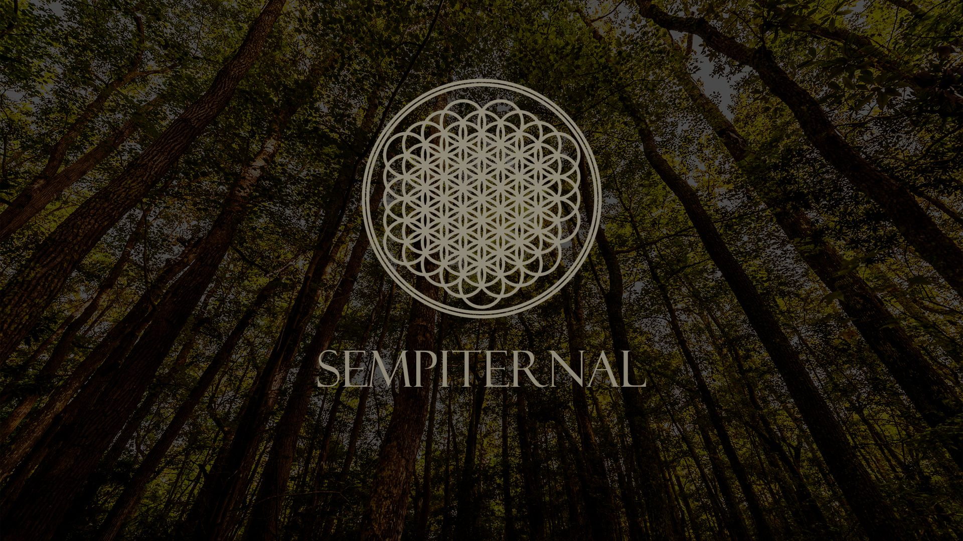 Bring Me The Horizon Wallpaper 15516 1920x1080 px ~ HDWallSource ...