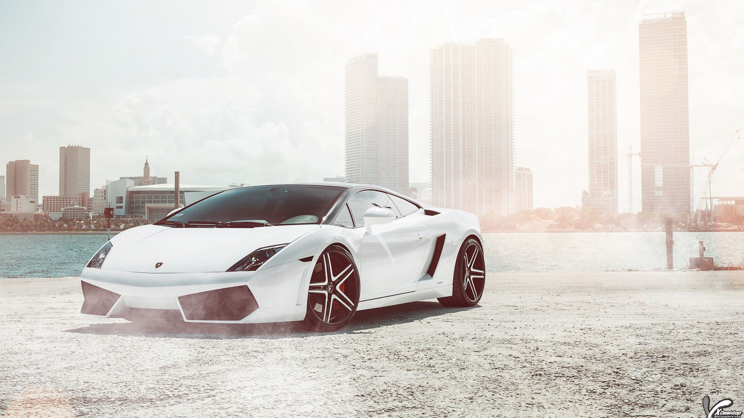 Lamborghini Gallardo Super Car In White Color Wallpaper