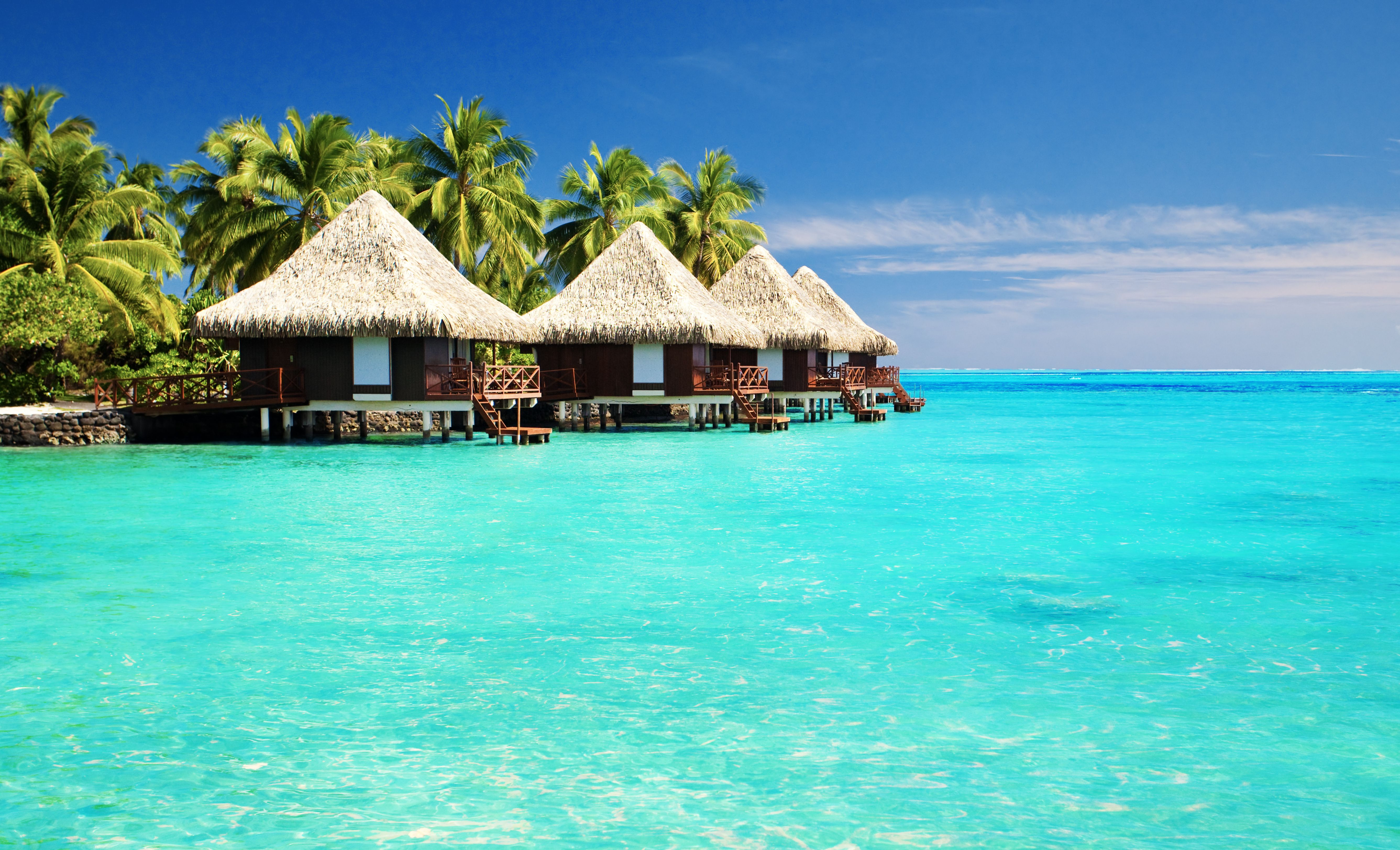 Tropical Paradise Desktop Background wallpapers HD free - 495651 ...