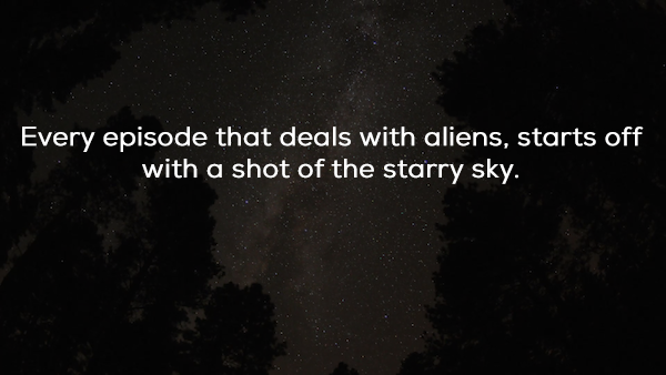 the truth about the x files is out there x photos 23 The truth about the X Files is out there (25 Photos)