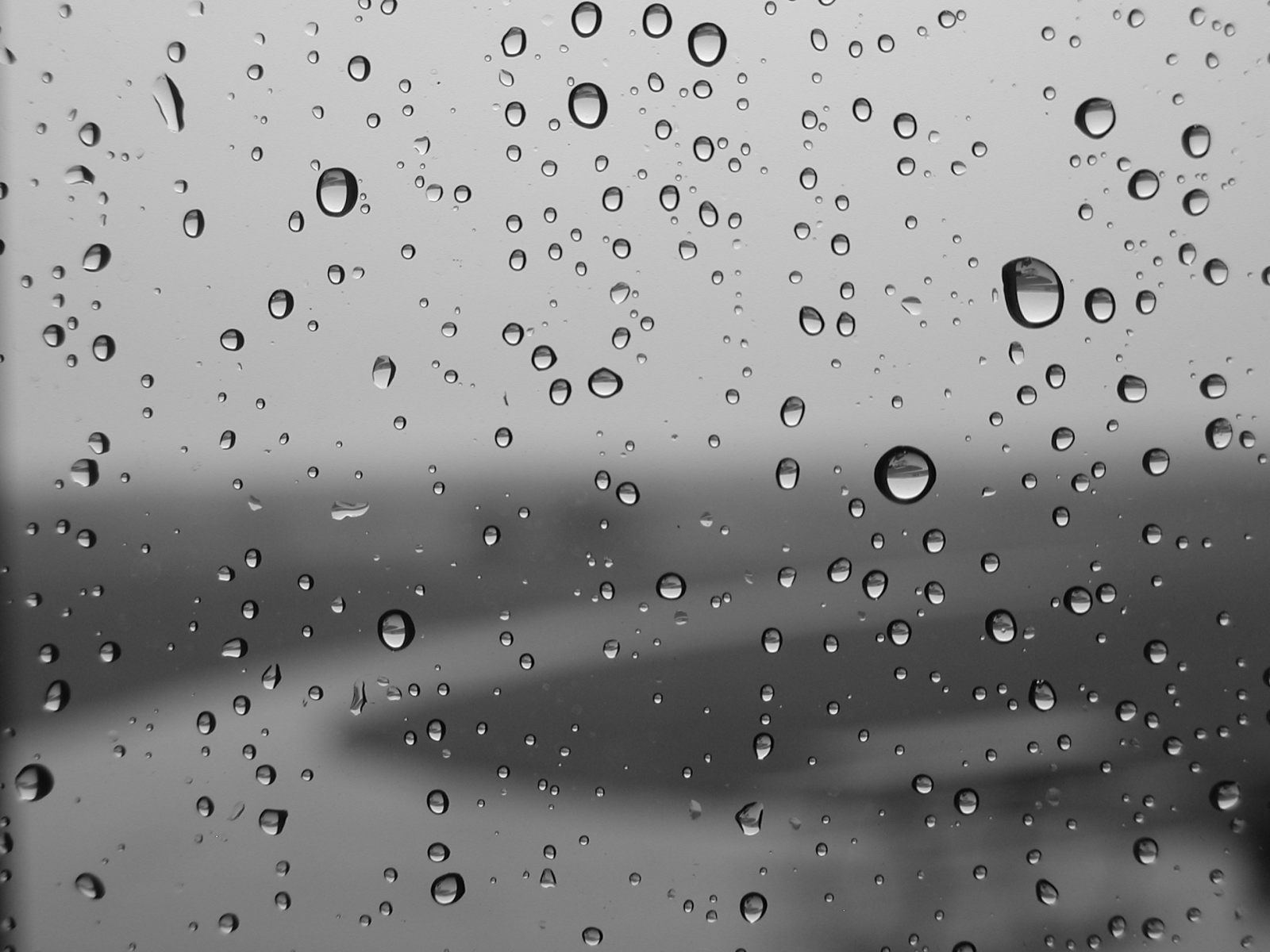 water, wet, water drops, condensation, rain on glass :: Wallpapers