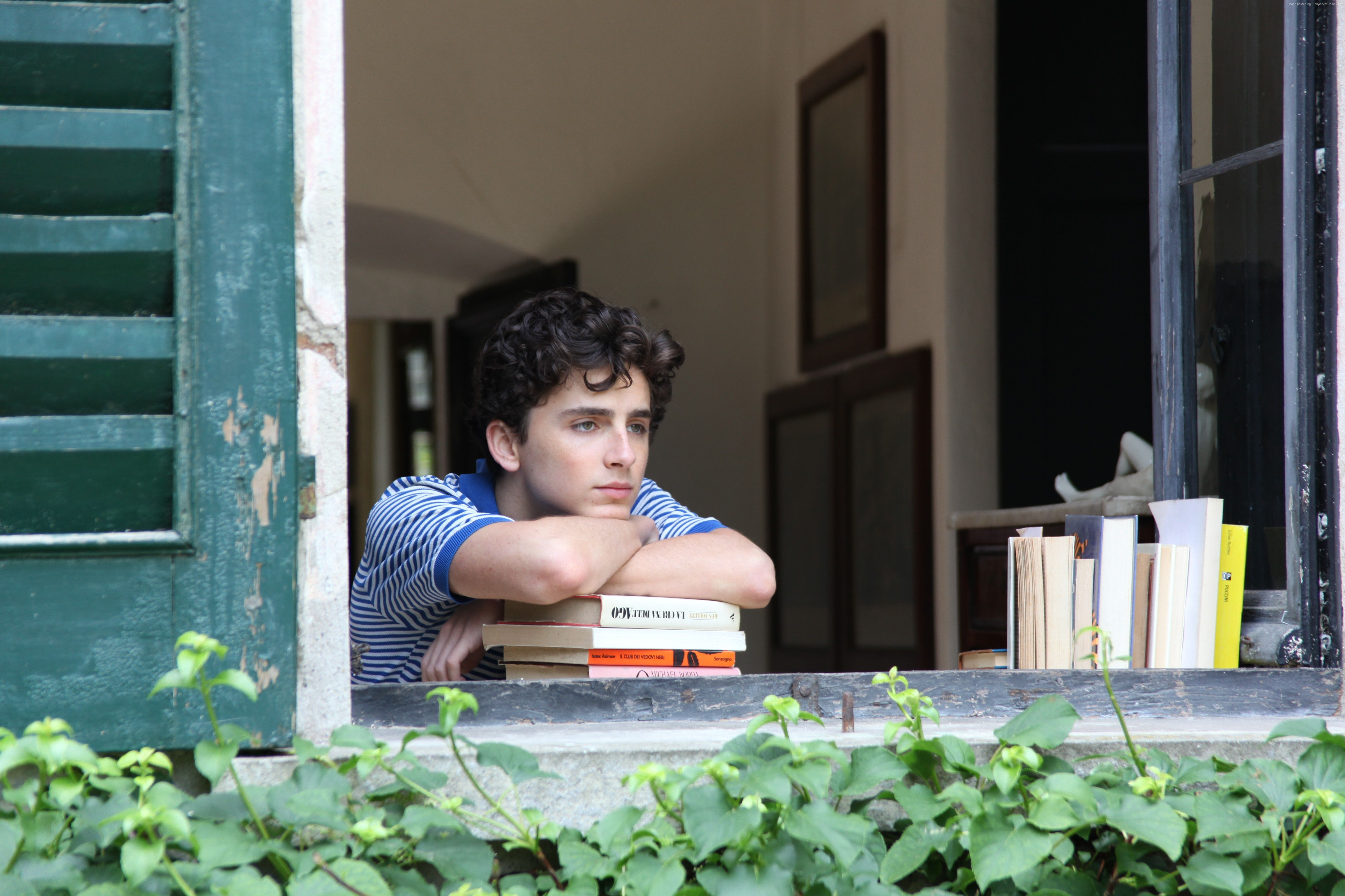 Wallpaper Call Me by Your Name, Timothee Chalamet, 5k, Movies #15257