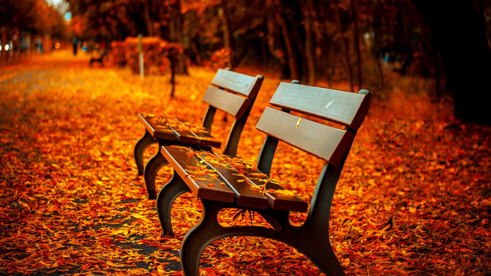 Autumn Scenes Wallpapers (63+ background pictures)