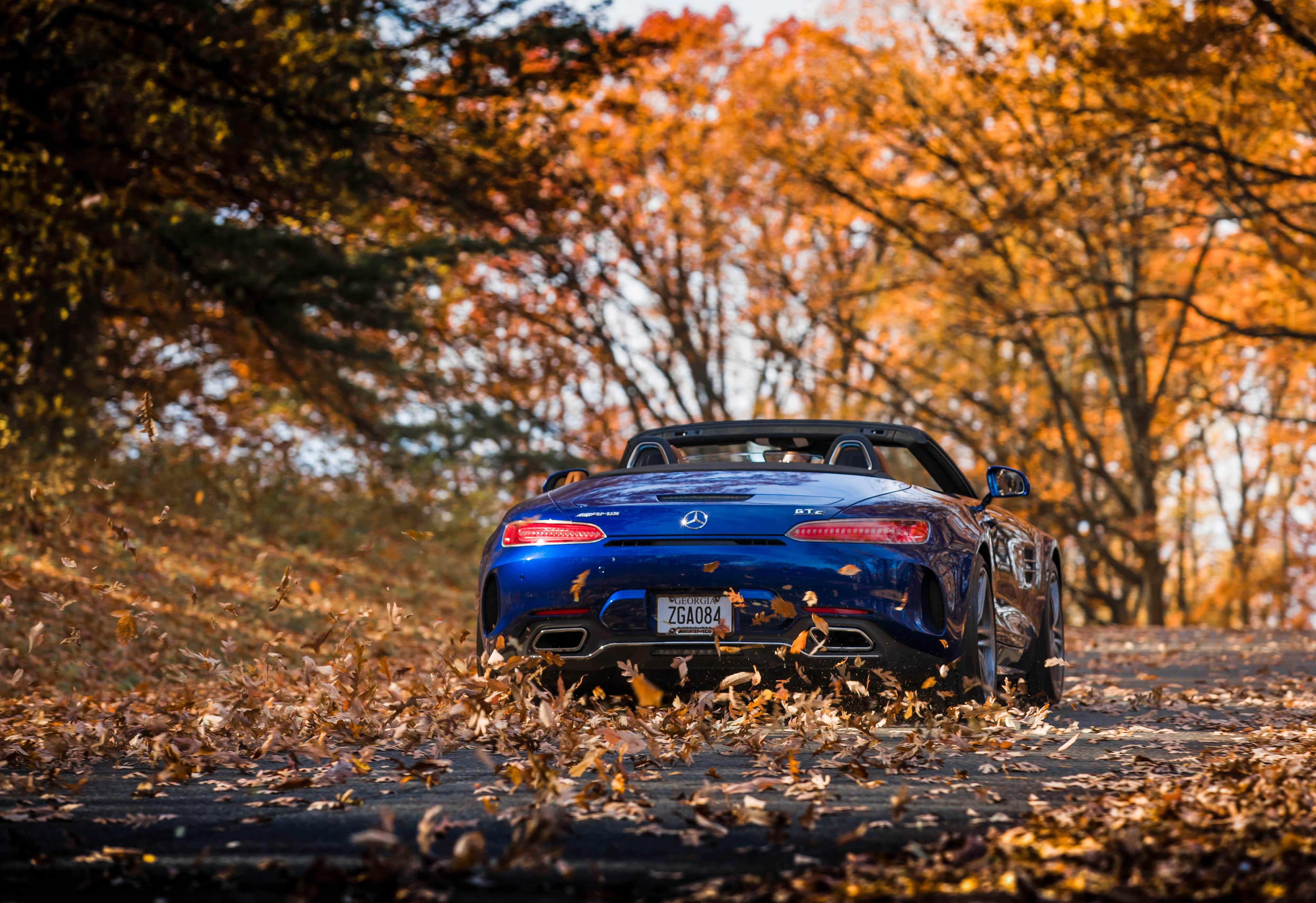 2018 Mercedes Amg GtC Roadster Autumn Road 4k #2938 Wallpapers and ...