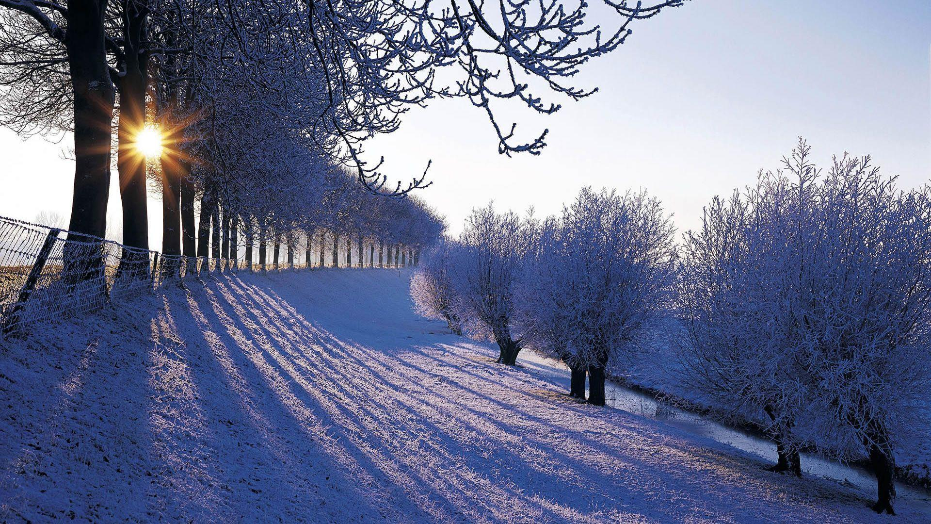 Winter Landscapes Winter Wallpapers For Iphone 5 , Free Widescreen ...