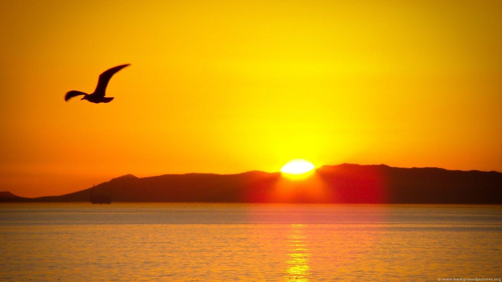 A Place For Free HD Wallpapers   Desktop Wallpapers: Sun Rise ...
