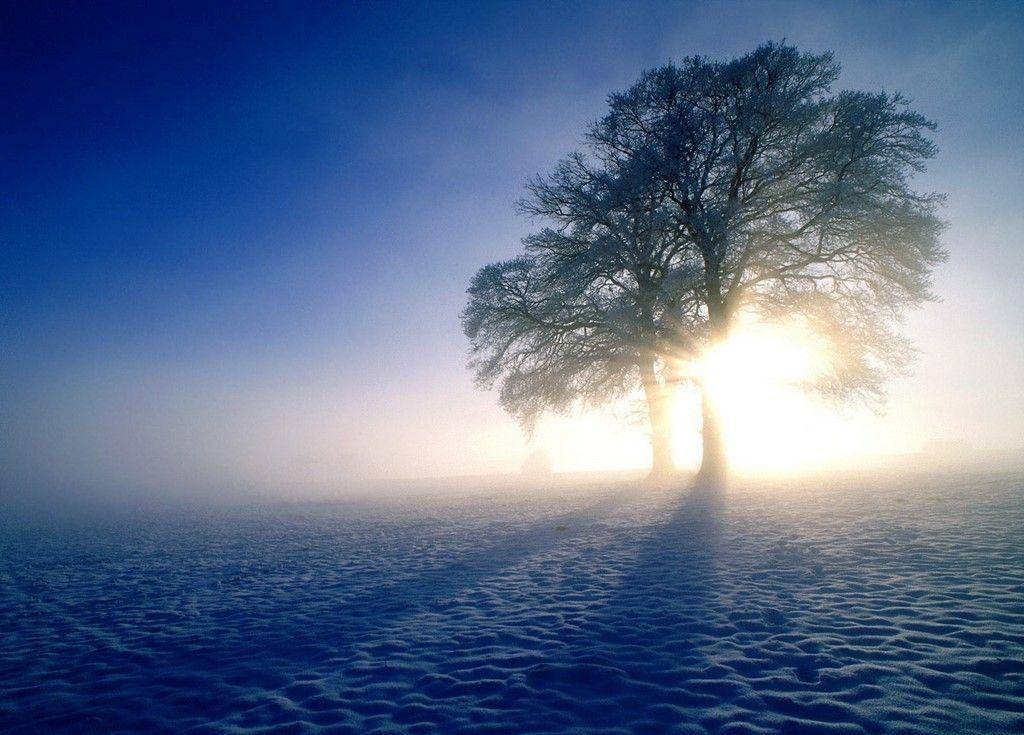 Winter Sunrise Wallpaper | Download HD Wallpapers