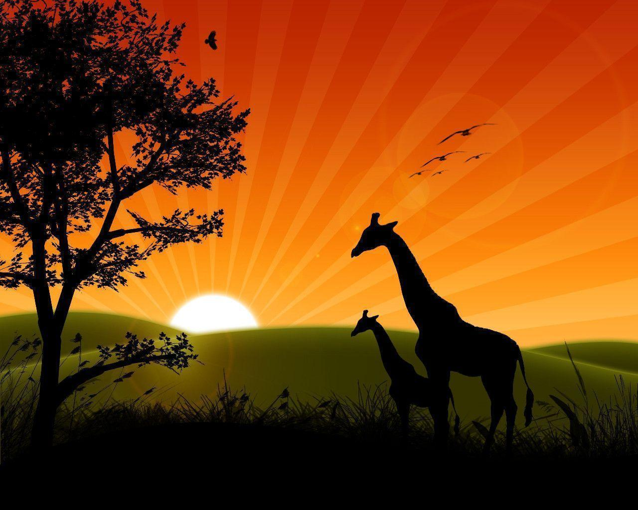 Sunrise Wallpaper Desktop | coolstyle wallpapers.