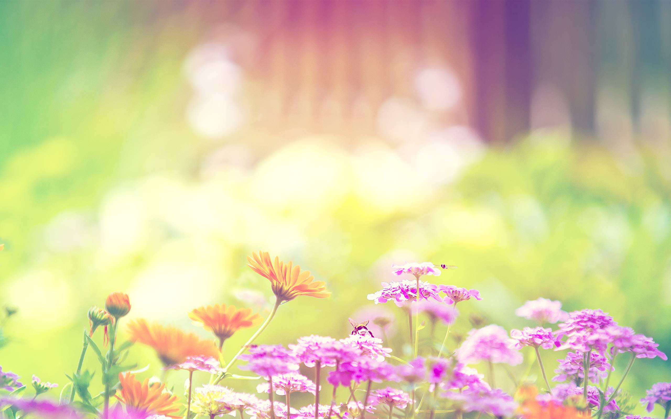 45+ Most Wanted Beautiful Spring Wallpapers | Stylonica