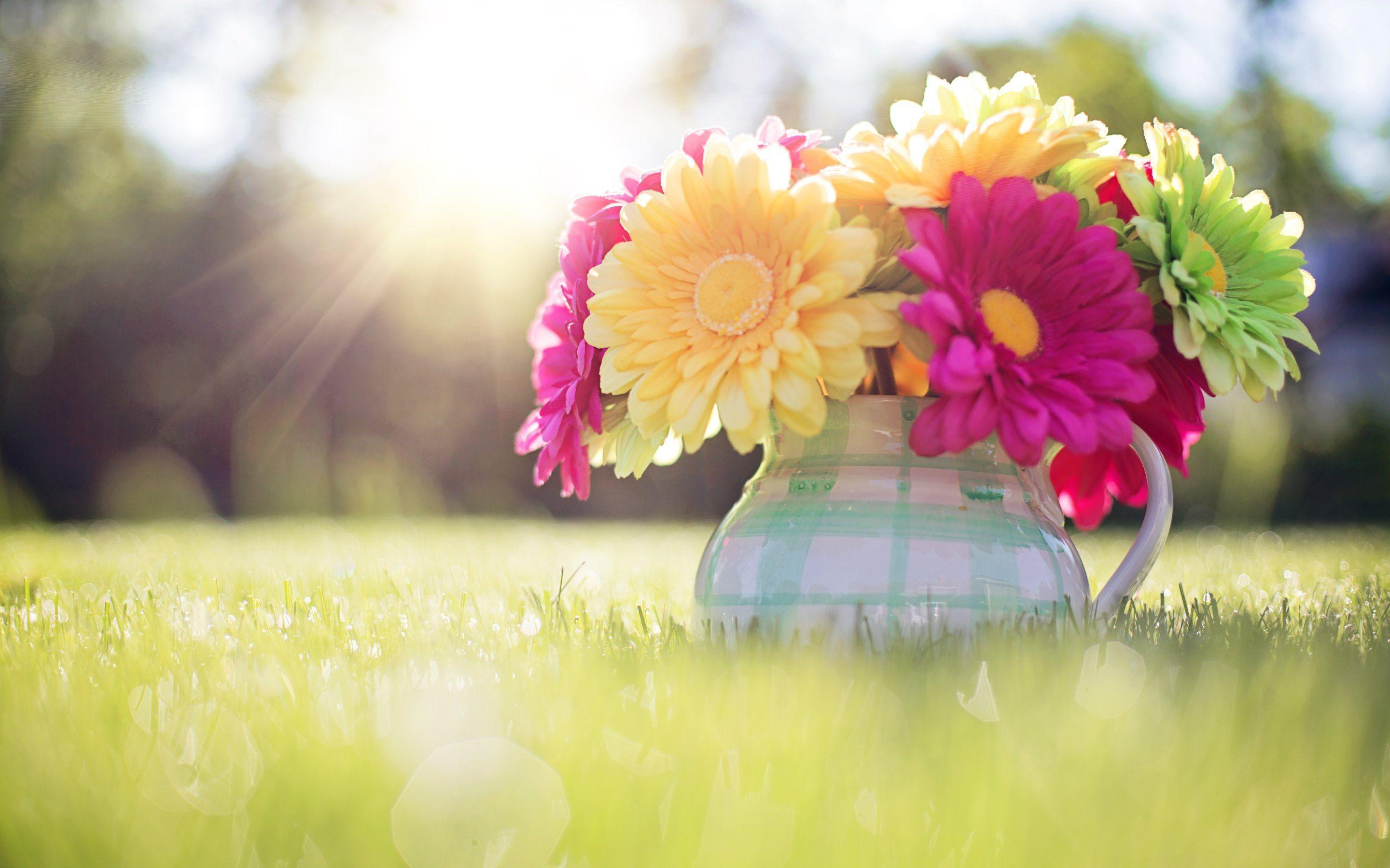 Spring Wallpapers Download Group (87+)