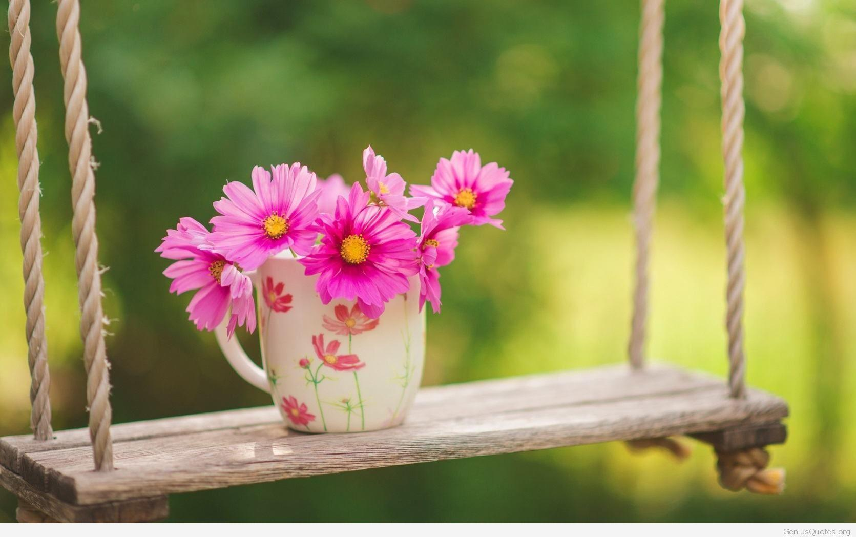 Awesome Pics | Spring Flowers HD Widescreen Wallpapers (43+)