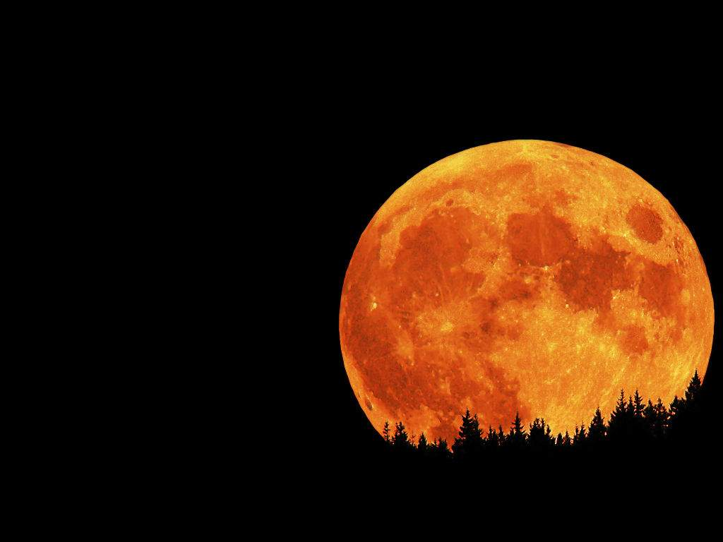 Wallpapers For > Red Full Moon Wallpaper