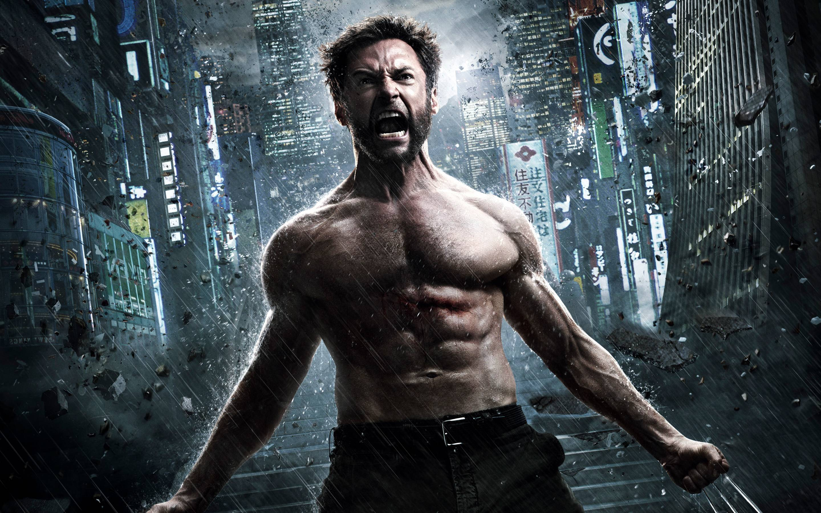 The Wolverine 2013 Wallpapers | HD Wallpapers