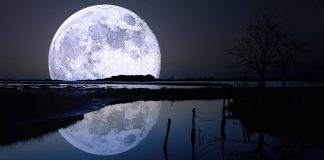 Full Moon Wallpapers.jpg