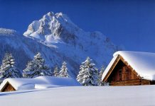 Winter Wallpapers.jpg