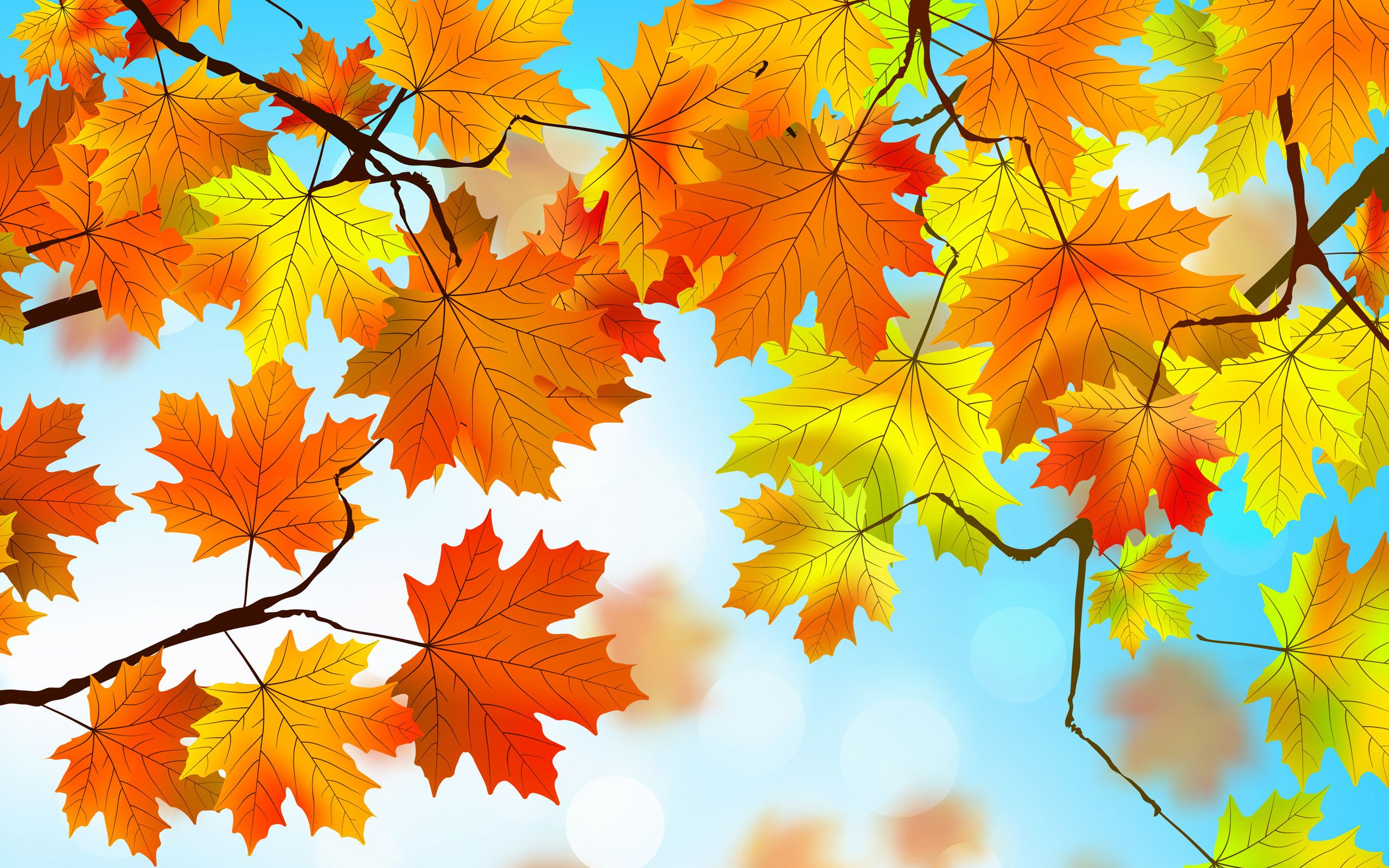 2560x1600 Autumn Leaves HD 2560x1600 Resolution HD 4k Wallpapers ...