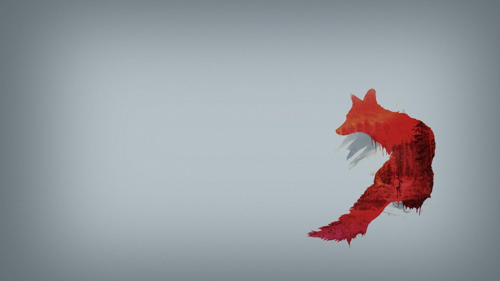Red Fox 1080p HD Wallpapers