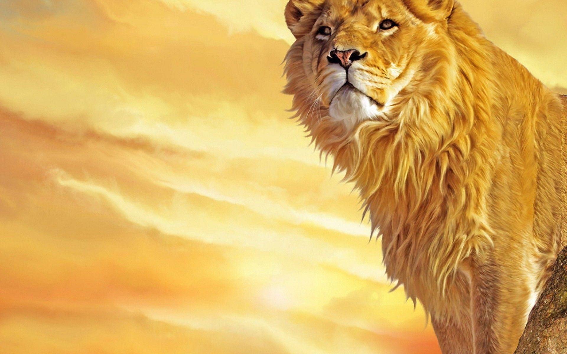 Mac Lion Wallpapers - Full HD wallpaper search - page 8