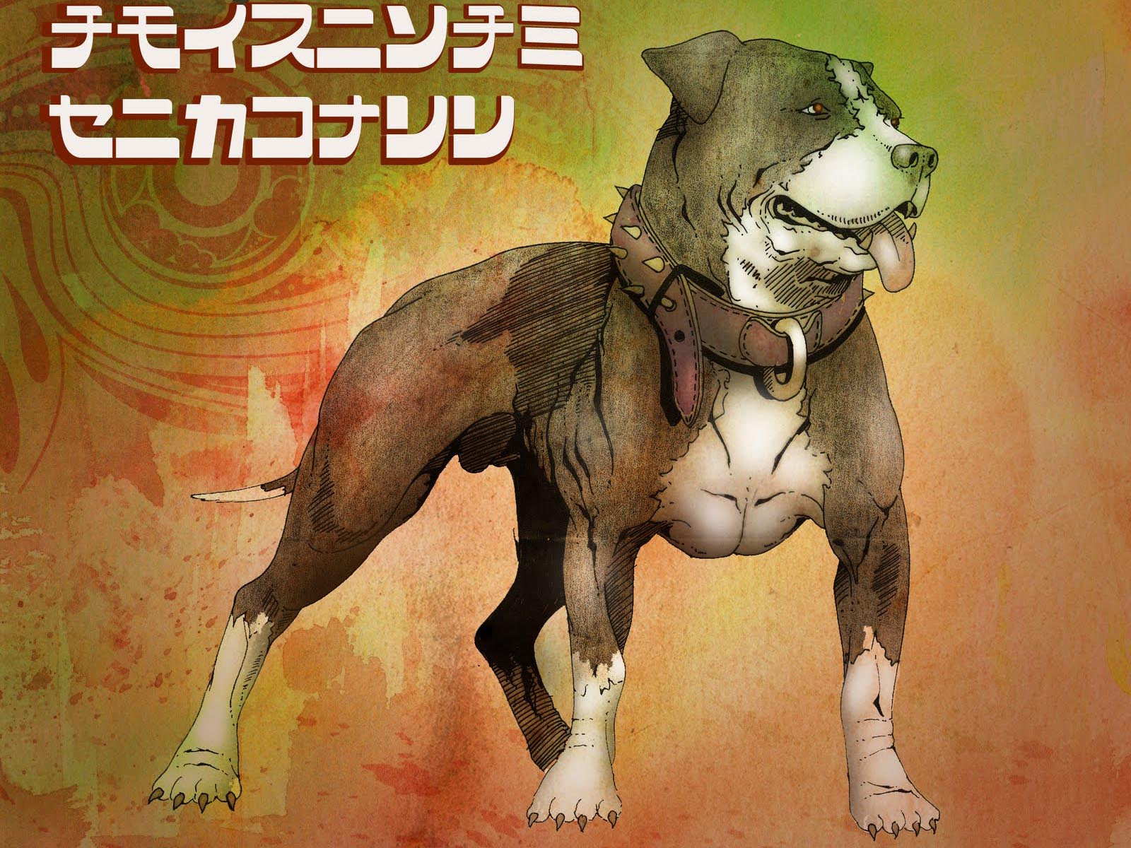 Animated american pit bull wallpapers