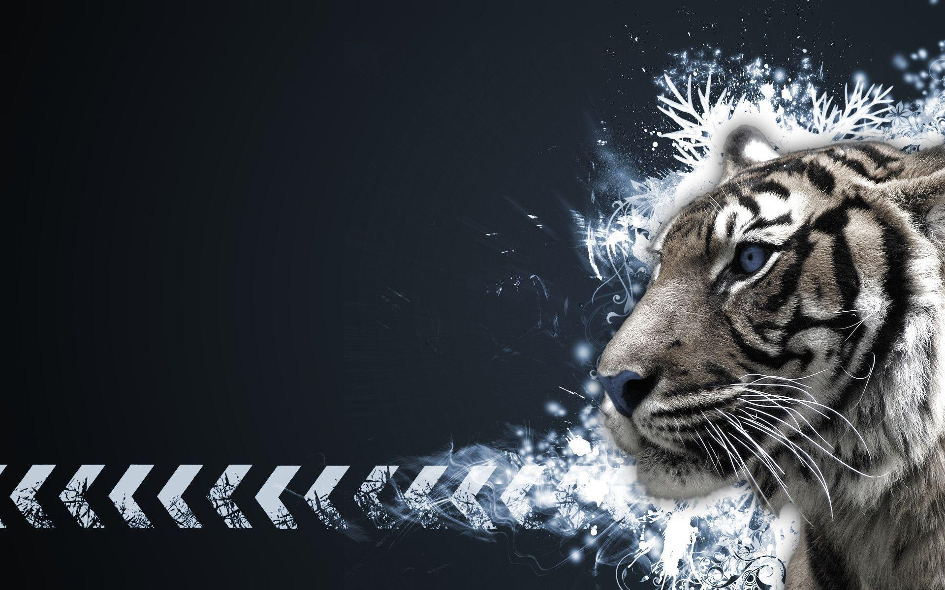 Tiger White Wallpapers - Full HD wallpaper search - page 3