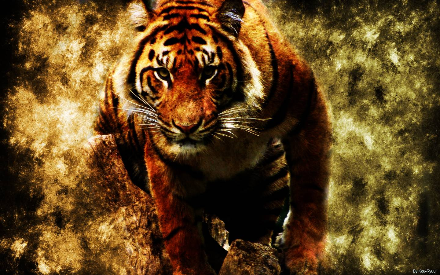 Tiger Wallpapers Laptop Cute Wallpapers