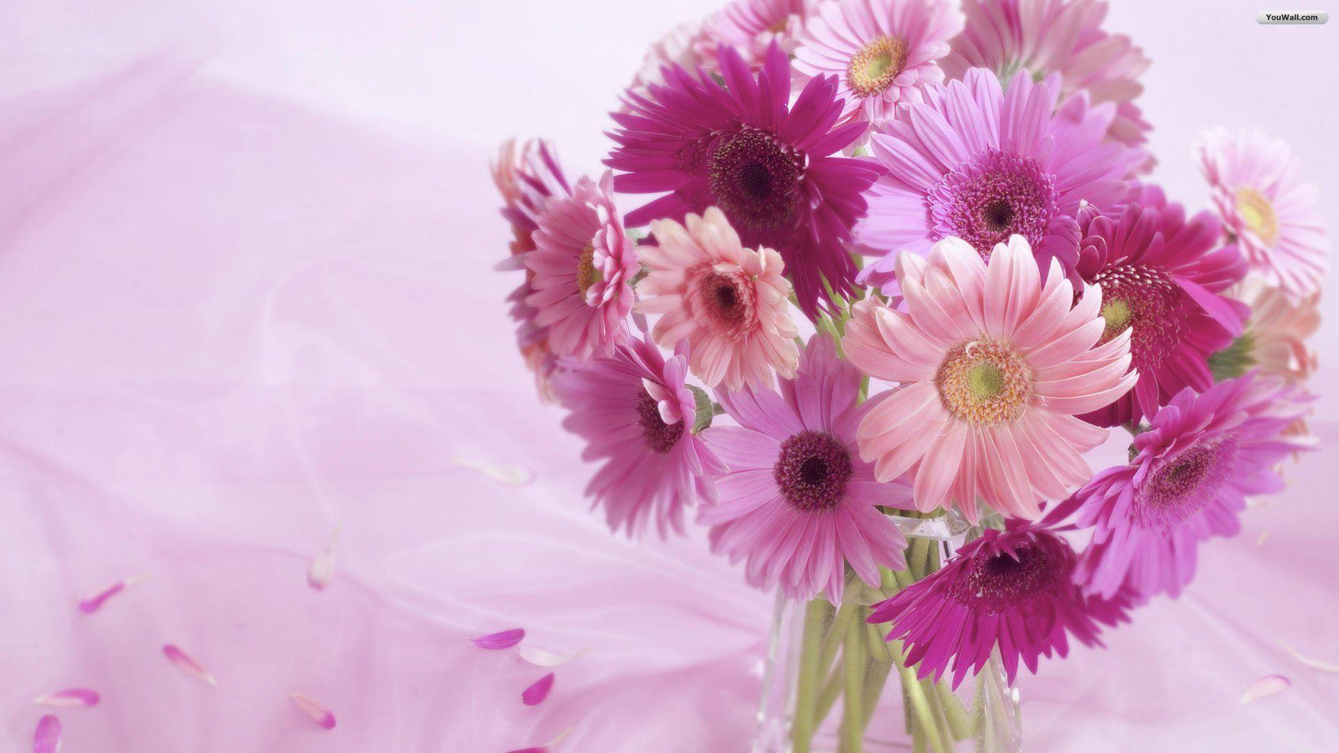 YouWall - Pink Flowers Wallpaper - wallpaper,wallpapers,free ...
